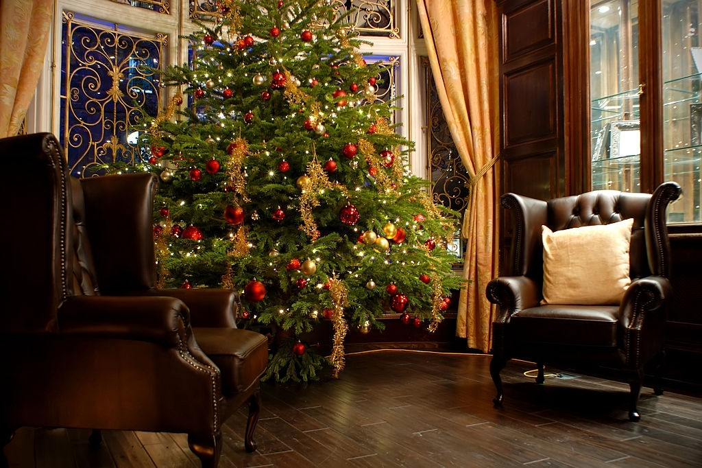 Christmas Tree - Christmas Traditions in England